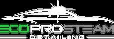 Eco Pro Steam Detailing LLC